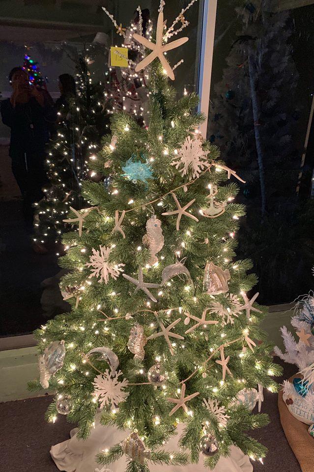 D'Asign Source - Coastal Christmas